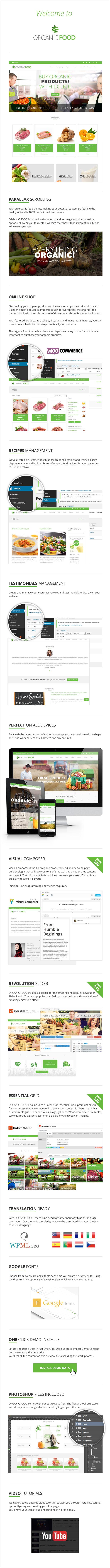 OrganicFood | Responsive WordPress Theme - 8