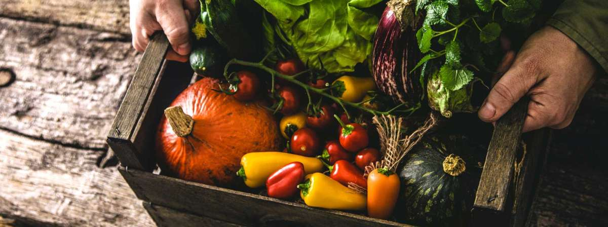 How We Get Our Organic Foods to Your Door. Fresh